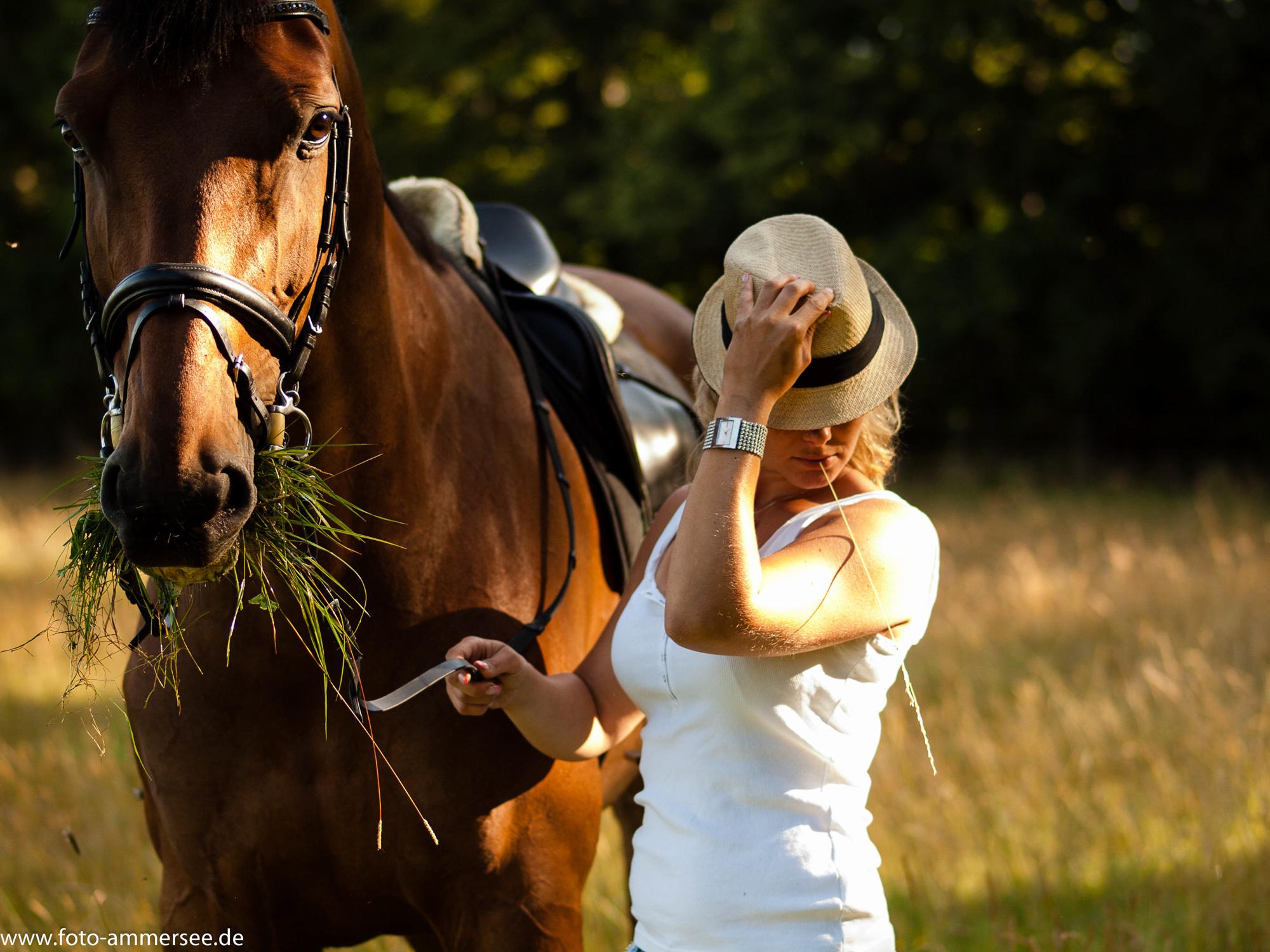 Morgenstund' auf dem Rücken der Pferde